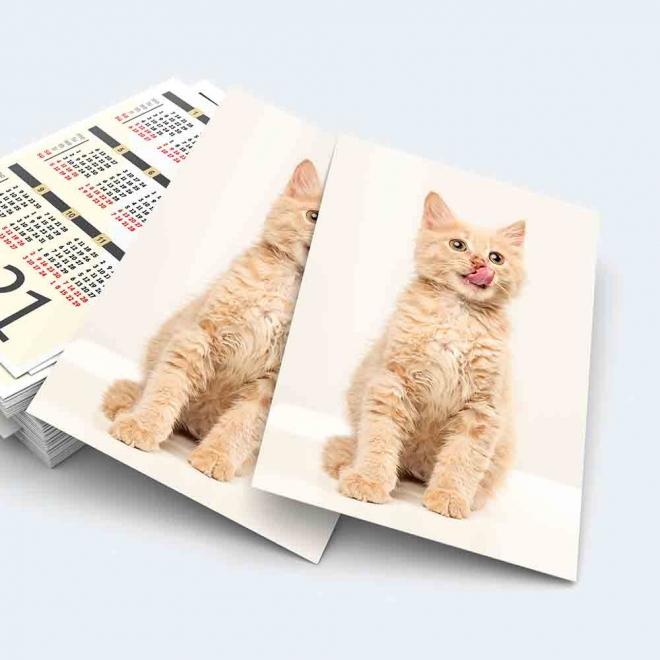 Calendar buzunar pisici 2022