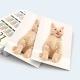 Calendar buzunar pisici