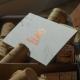 Carti de vizita cu folio metalizat